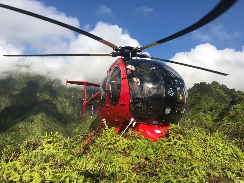 Conservation Job Hawaii